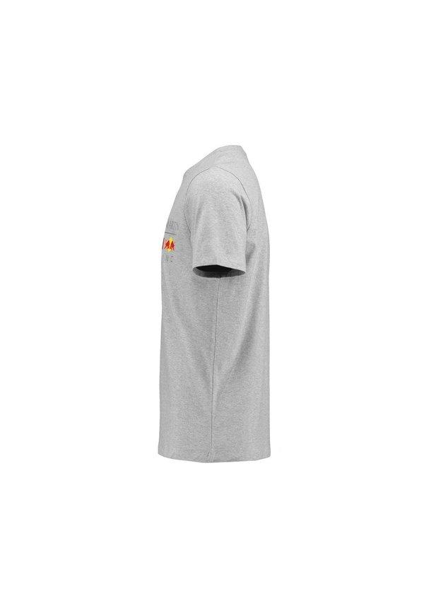 RBR Logo T Shirt grijs 2018 MEN
