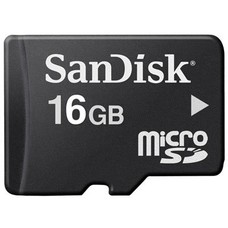 Sandisk 16 GB SD Card
