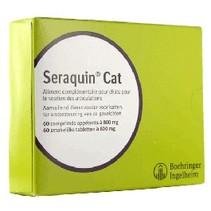 Seraquin Katze