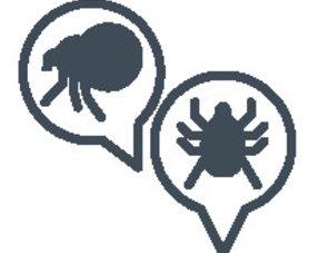 Floh- und Zeckenschutz