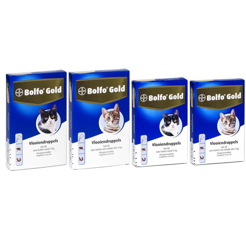 Bolfo Gold Cat