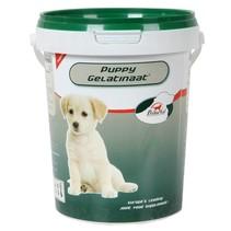 Primeval Gelatinaat Pup