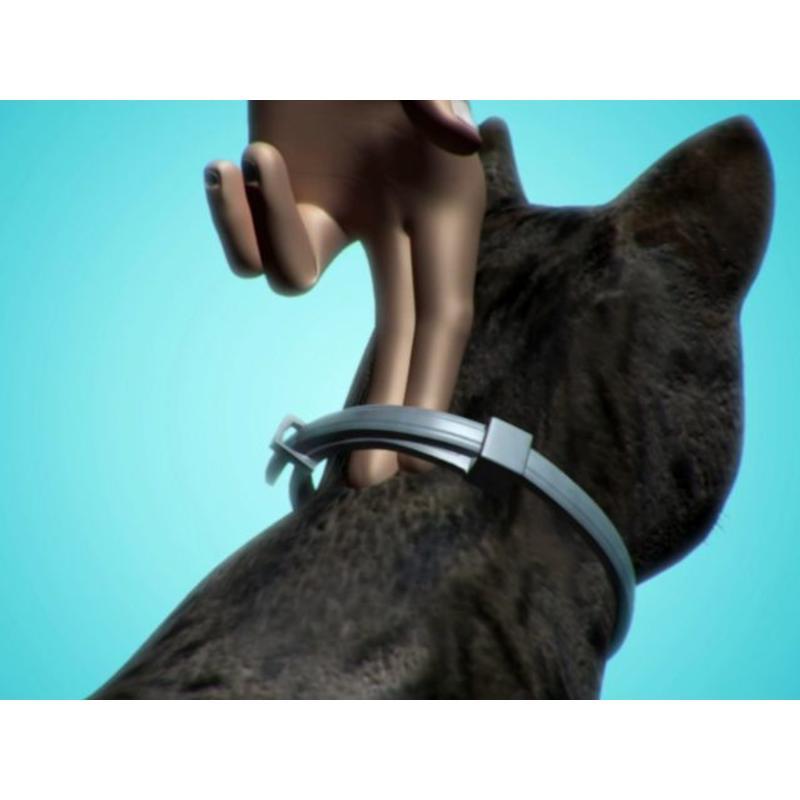 Seresto Cat Collar
