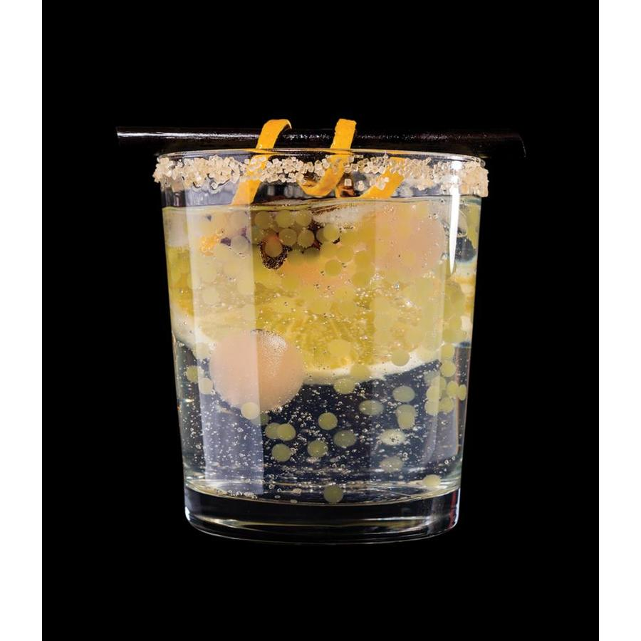 Gin & Tonic R-Evolution-4