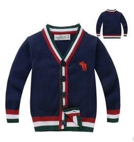 Jongenskleding Abercrombie en Fitch Vest - blauw