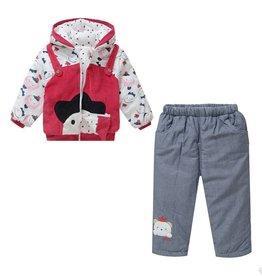 Babykleding Poppetjes Boxpakje met capuchon - rood / grijs