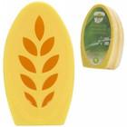 Citronella Gel 100gr set a 2 st.