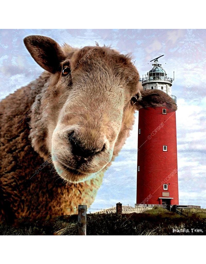 Alu Plaat Vuurtoren Texel en Schaap 25x25cm. geborsteld uv