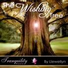 The Wishing Tree CD (wensboom CD)
