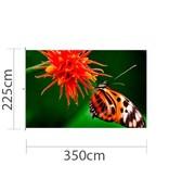Mastvlag, full colour bedrukt, 350x225cm