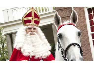 Sinterklaascadeautjes onder 15,-