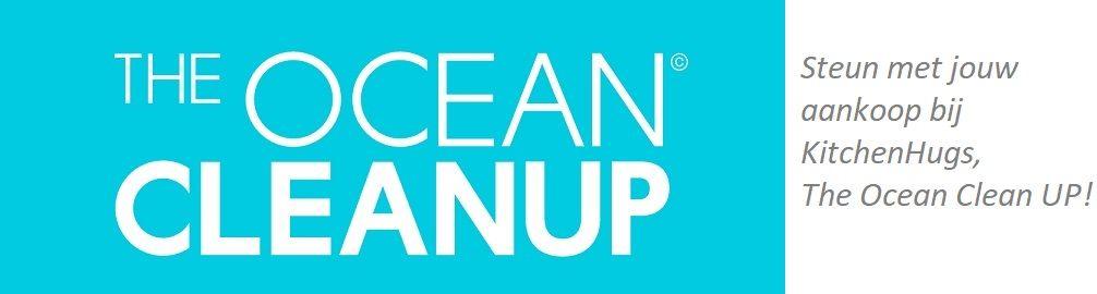 Eindejaarsactie voor The Ocean Clean Up!