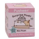 Gund Knuffel kat Pusheen surprise box sleutelhanger serie 3