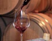 Nieuwe wijnen
