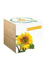 chicmic Flowercube Sonnenblume