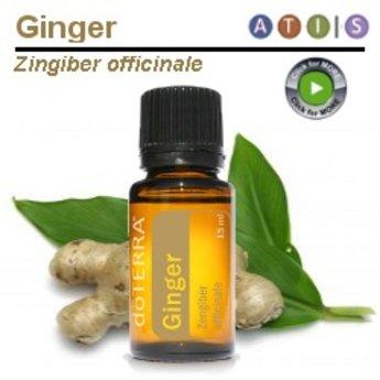 doTERRA Ginger Essential Oil
