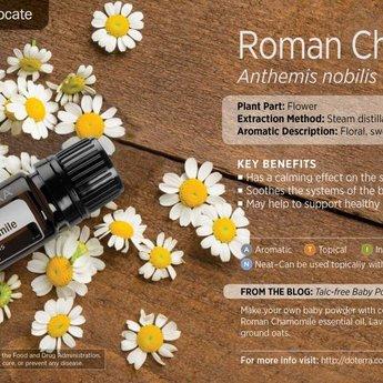 doTERRA Roman Chamomille essential oil 5 ml.