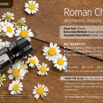 doTERRA Roomse Kamille