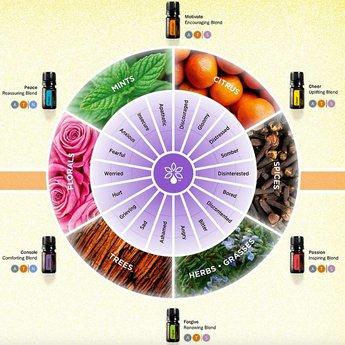 doTERRA Emotional Aromatherapy Touch Kit