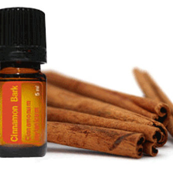 Cinnamon Essential Oil Bliz Wellness