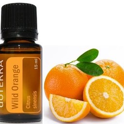 doTERRA Wild Orange Essentiële Olie