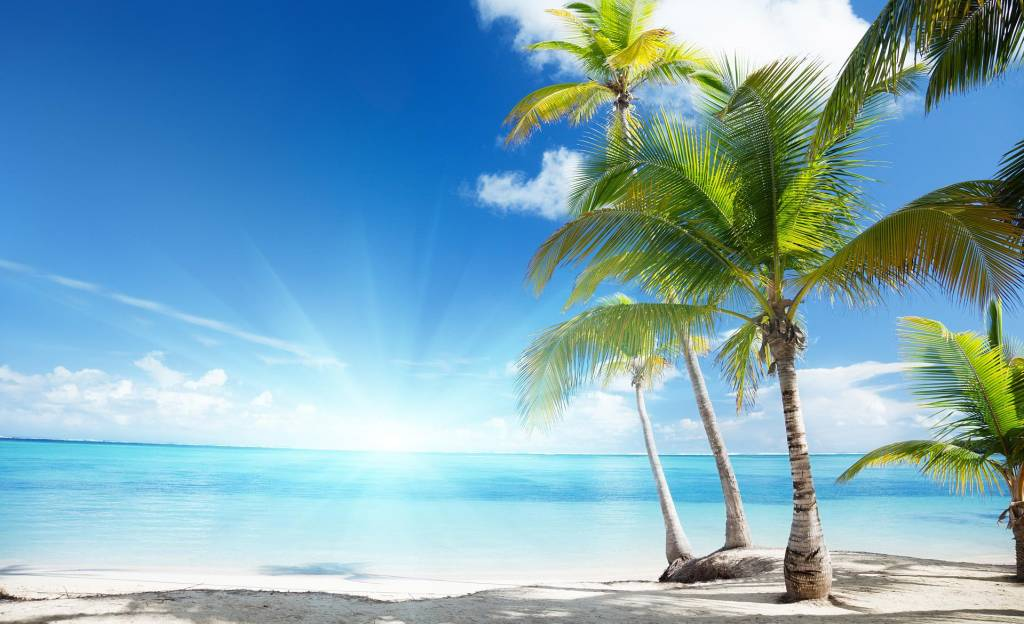 palmen-am-strand.jpg