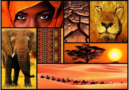 Educa Kleuren van Afrika - 1000 stukjes
