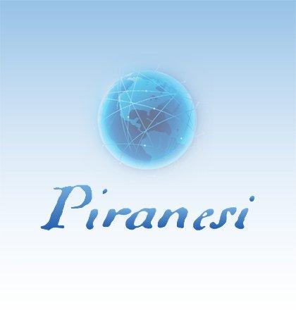 Piranesie 6 netwerklicentie