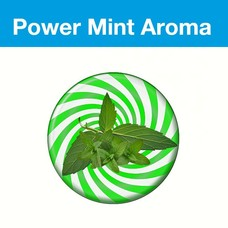 Flavory Power Mint Flavor