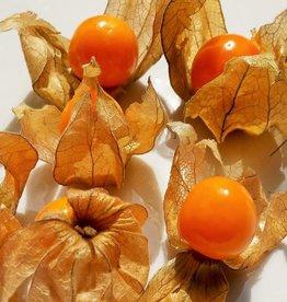 B-Organic Incan berries - Physalis