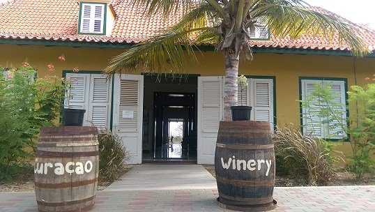 Into Italia gaat vreemd… Wijnbouw op Curaçao!