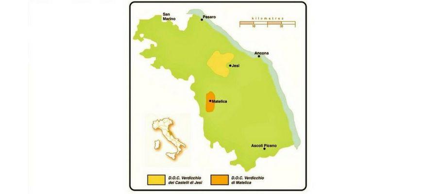 Een rondje Verdicchio – Zwerftocht langs de prachtige wijnvelden van de Marche