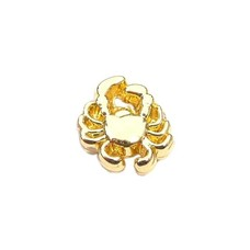 Floating Charms Floating locket charm krab goud