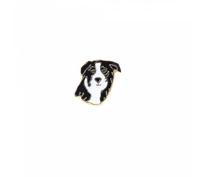 Floating Charms Floating locket charm zwart witte border collie goud