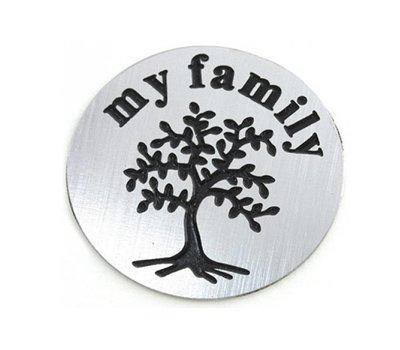 Floating locket  discs Memory locket disk my family zilver large