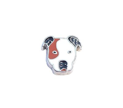 Floating Charms Floating locket charm pitbull zilver