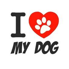 Clicks en Chunks | I love my dog click