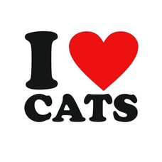 Clicks / Chunks I love cats click