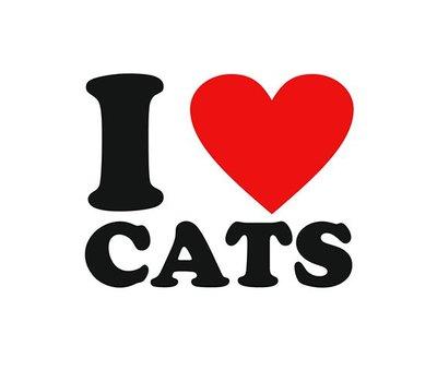 Clicks en Chunks | I love cats click
