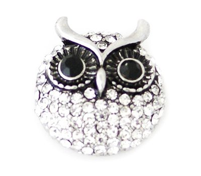 Clicks / Chunks Click crystal owl zilver