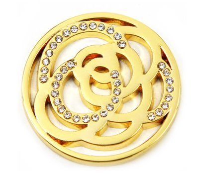 Munt voor Muntketting Twisting circles met crystals goud