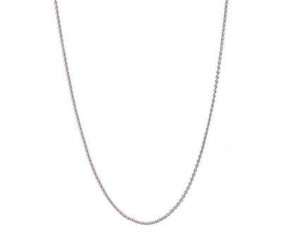 Ketting voor Muntketting Coin ketting Zilver 80cm van roestvrij staal