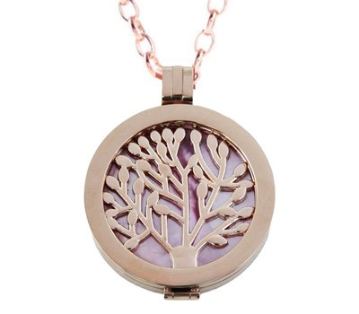 Complete Muntketting Pink Pearl Family Tree Rose Goud