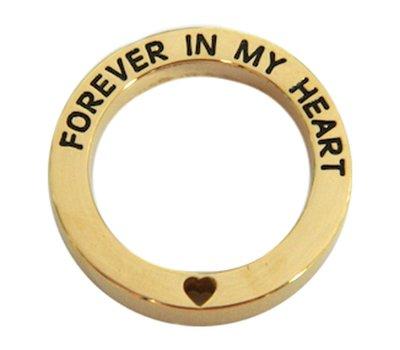 Locket Disks Floating locket open disk forever in my heart goud