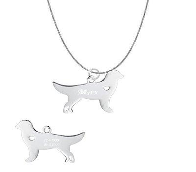 Dieren Sieraden Graveerbare honden ketting Golden Retriever