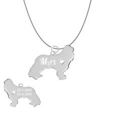 Dieren Sieraden Graveerbare honden ketting Spaniel