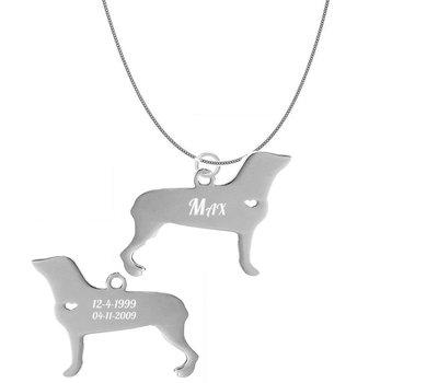 Dieren Sieraden Graveerbare honden ketting Rottweiler