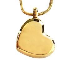 Assieraden Assieraad Ashanger schuin hart goud inclusief ketting