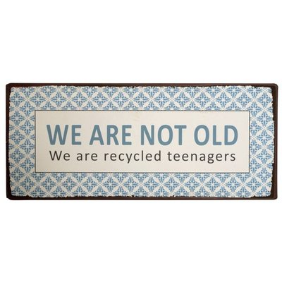 "IB Laursen Metallschild "" We are not old...."""