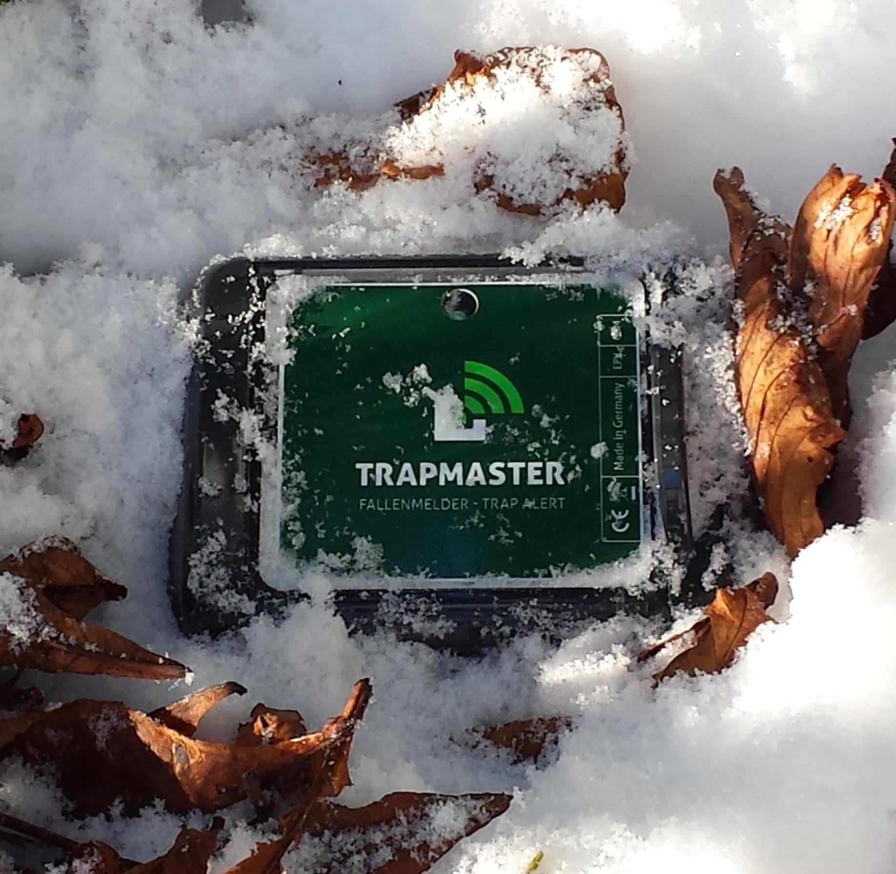 Fallenmelder Fallenalarm Fallenwächter Trapmaster im Schnee Test